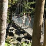 Hängebrücke auf der Südinsel