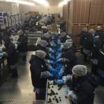 Mitarbeiterinnen in einer Kirschen-Fabrik
