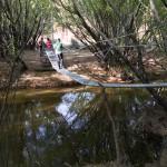 Hängebrücke zu den Cuevas de las Manos